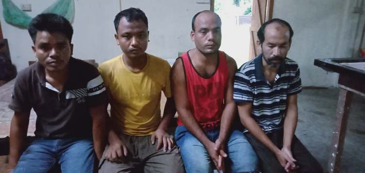 timber smugglers