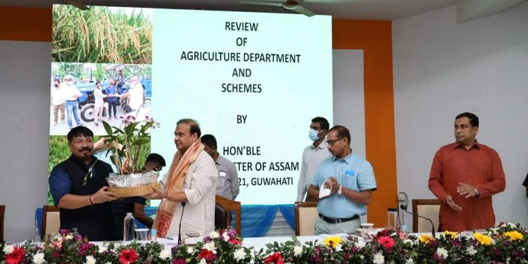 Fill up vacancies, create new posts: Assam CM asks agriculture department 1