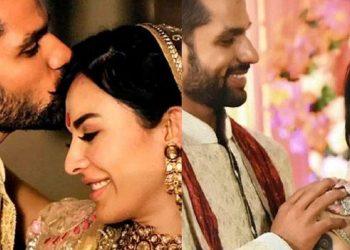 Indian cricketer Shikhar Dhawan gets divorce, part ways with Ayesha Mukherjee 3